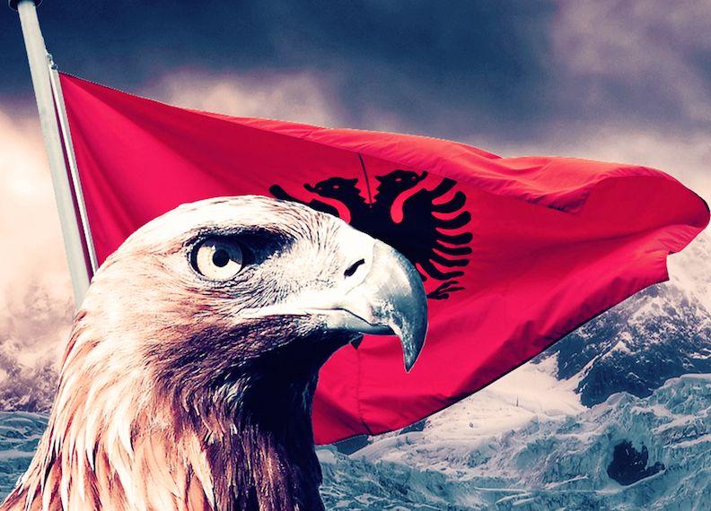 alb-eagle
