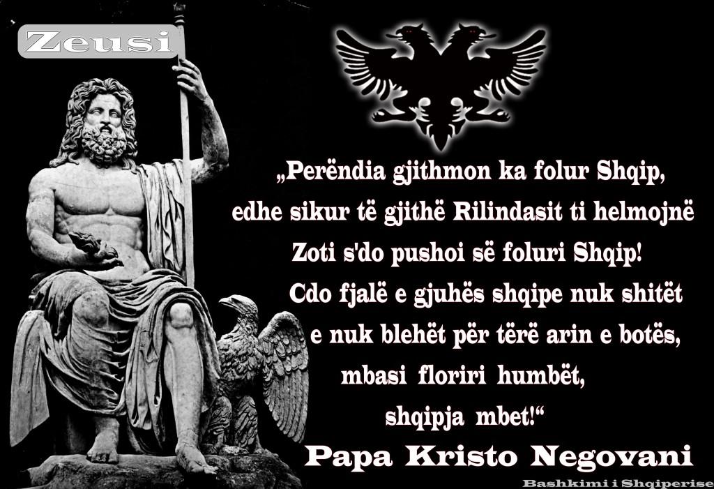 Perendia_zeusi_papa