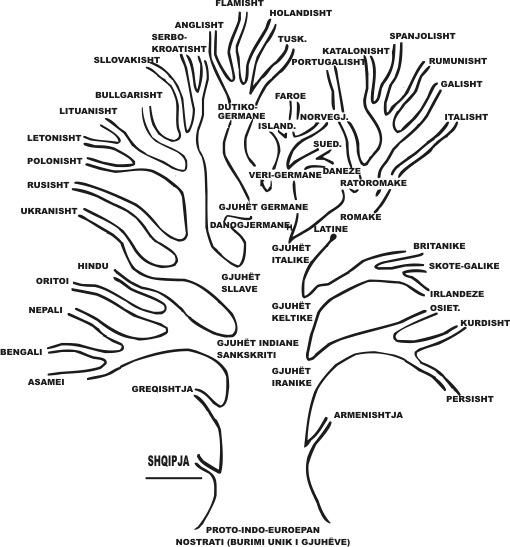 pema gjuheve
