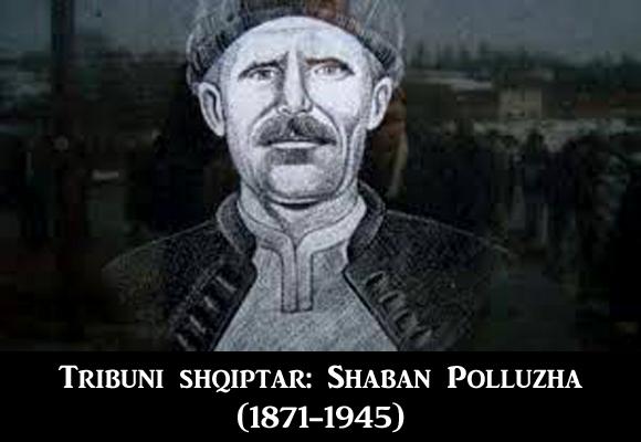 shaban_polluzha_tribuni