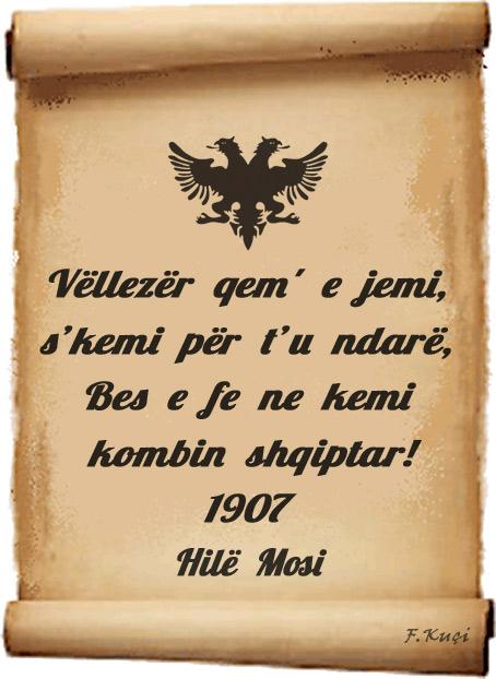Hil_mosi_kombi_feja